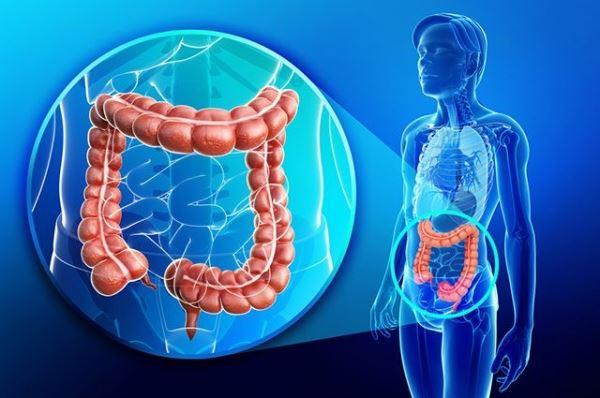 Диагностика рака толстого кишечника